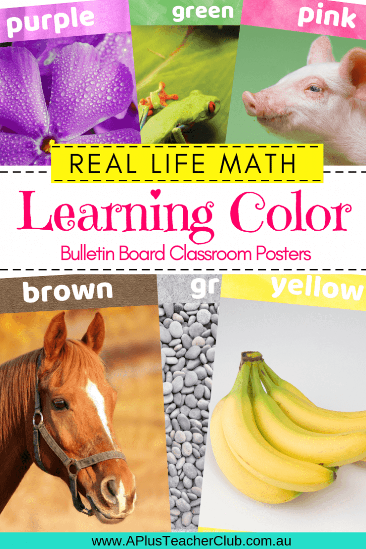 Learning Colors Posters Product Image